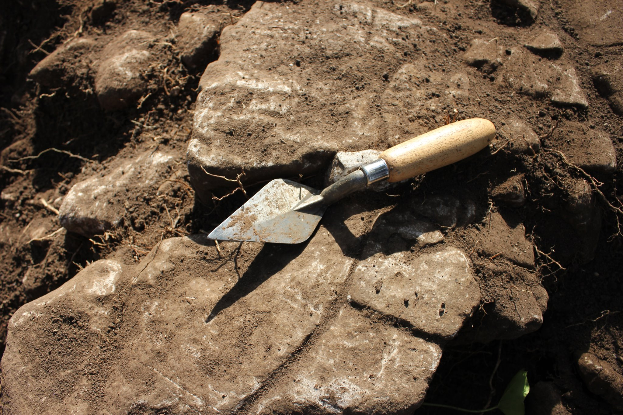 Archaeology_Trowel
