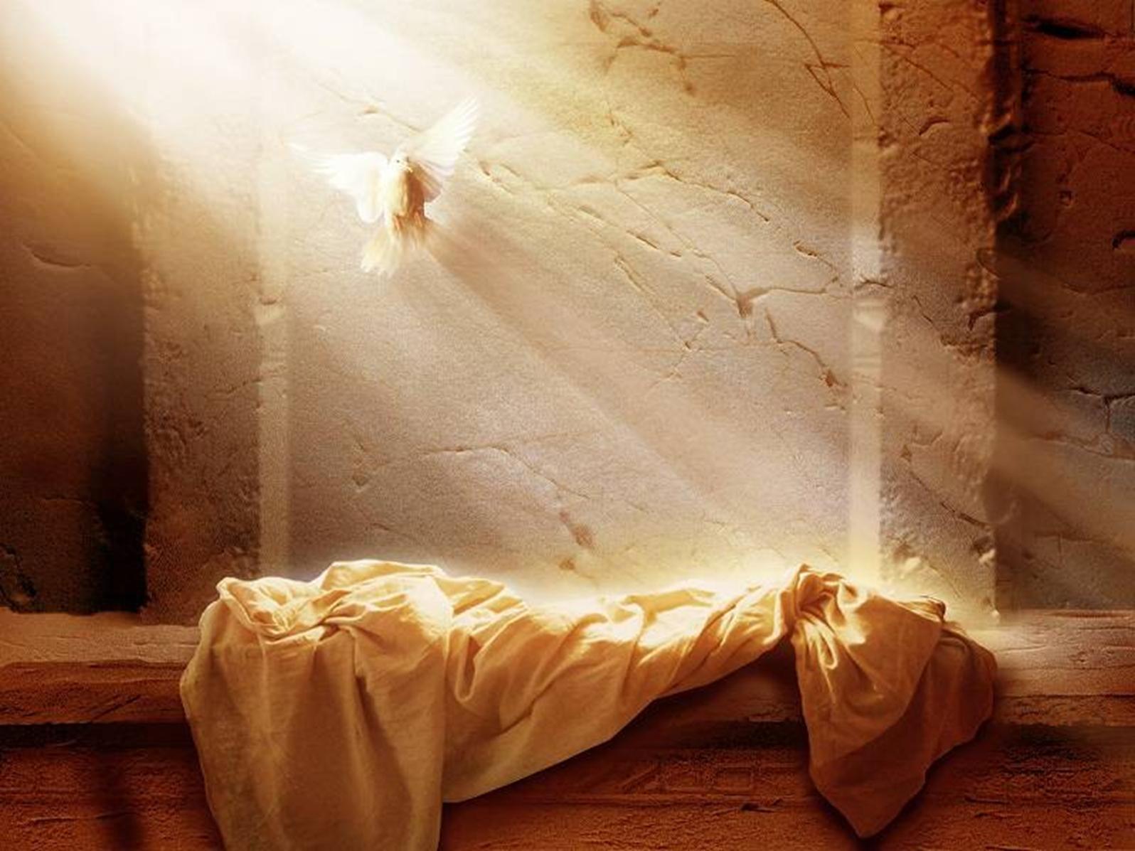Ressurrection
